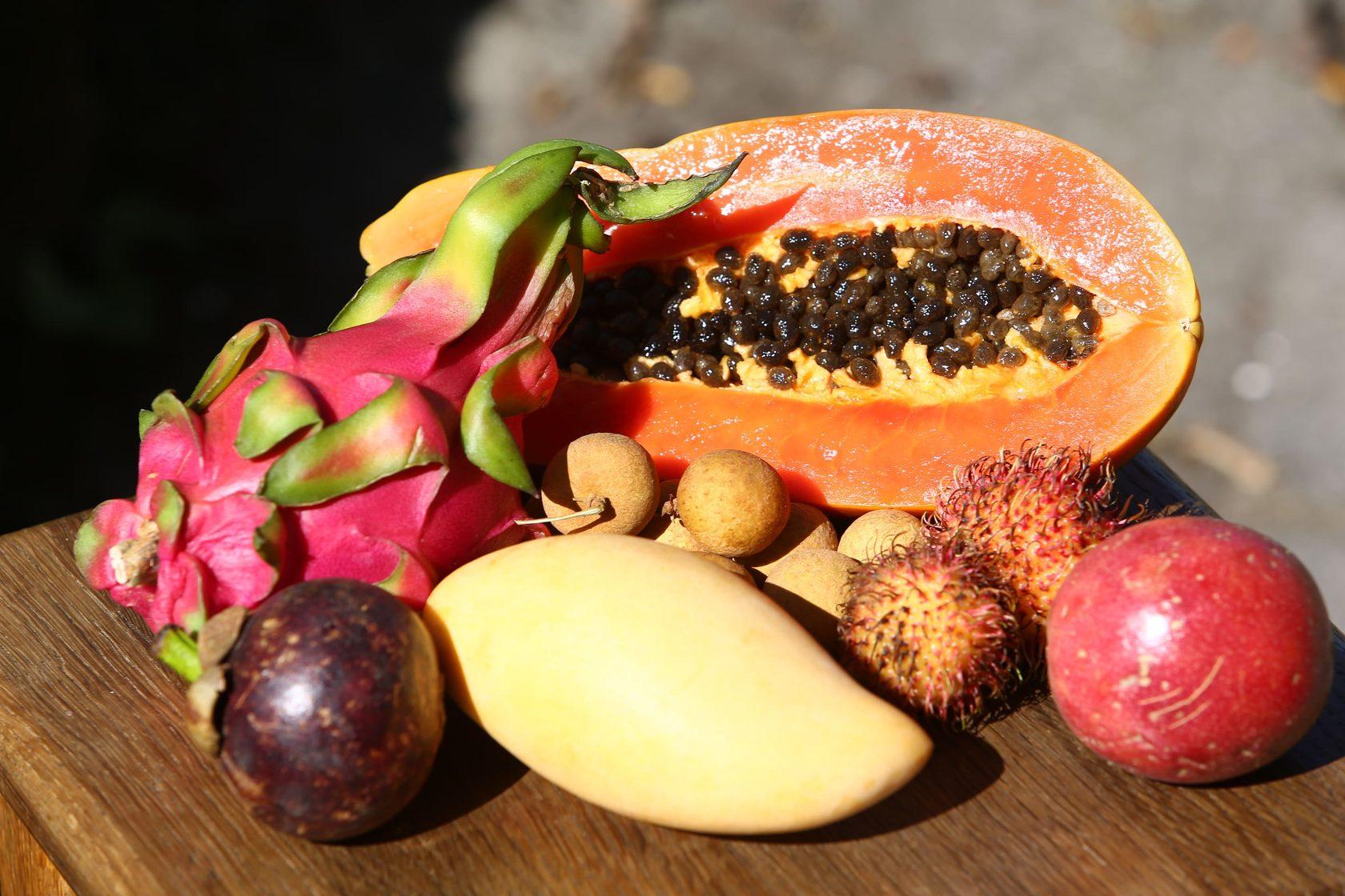 обувь тропические ягоды названия и фото бинта держит